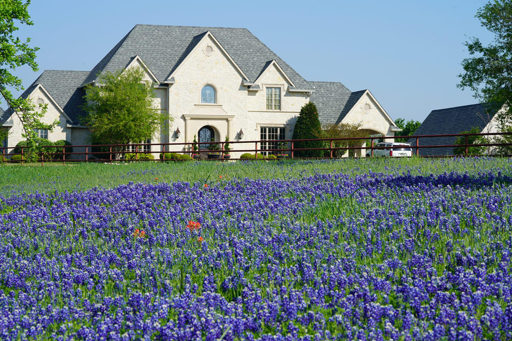 What are the Best Kinds of Dallas Fort Worth Texas Homes to Buy?