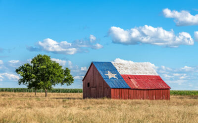 What Are The Best Kinds of Azle Homes to Buy?