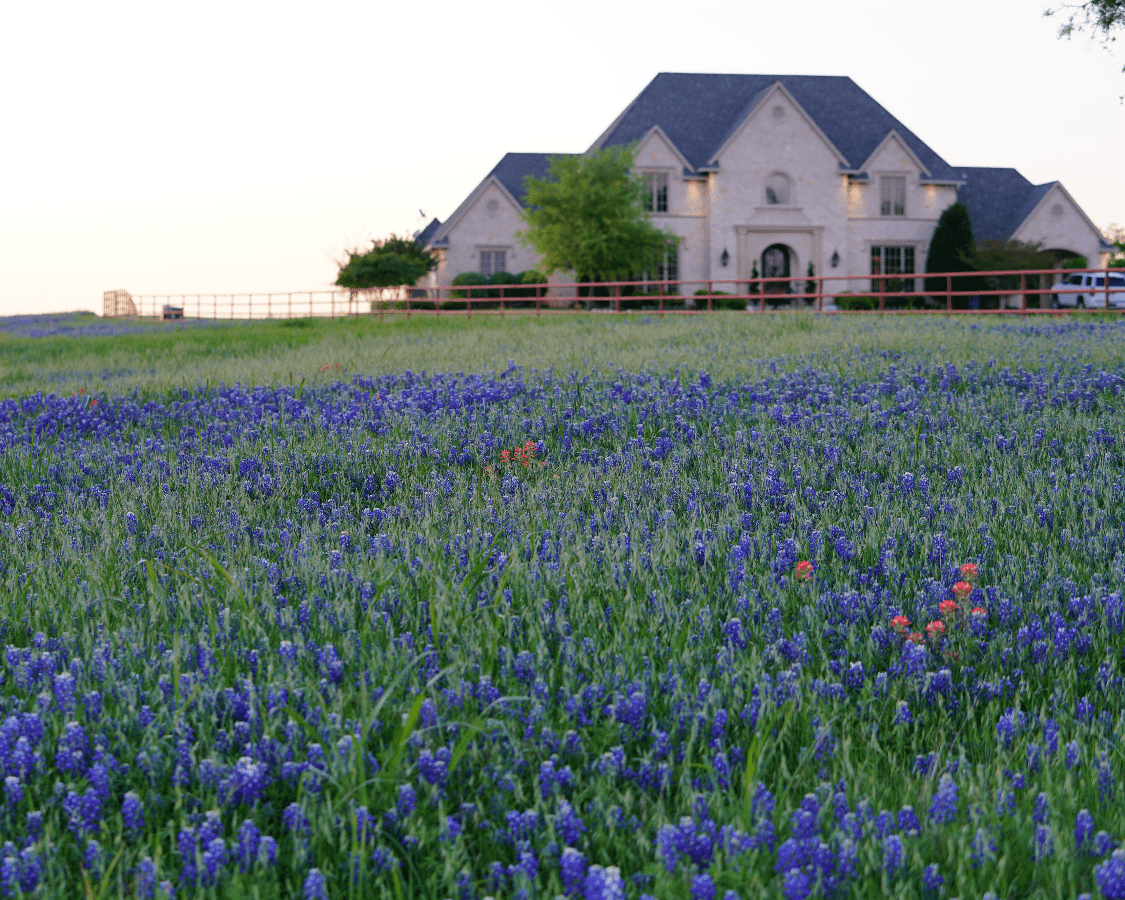 Sell My house cockrell hill texas
